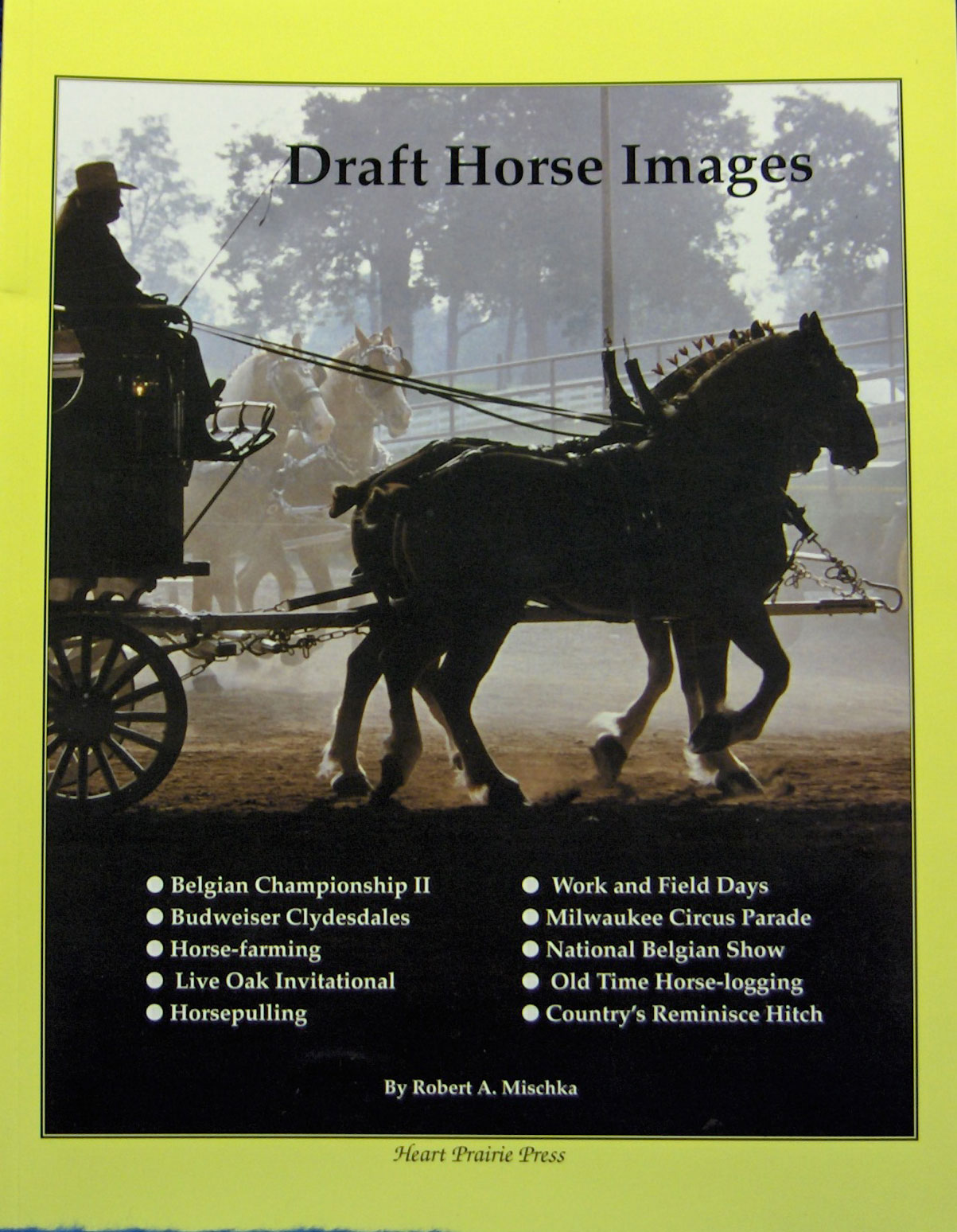 Draft Horse Images