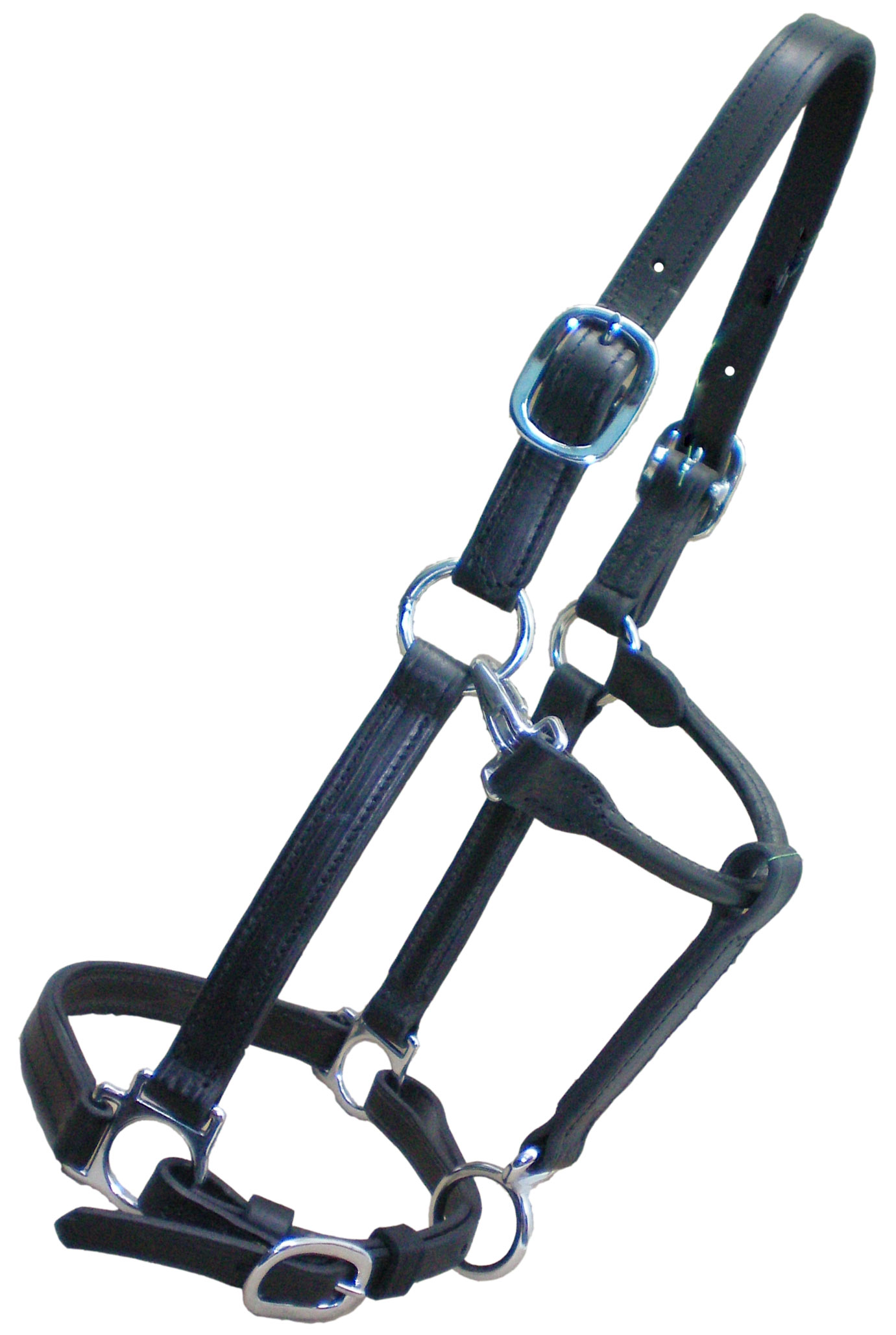 2 Ply Leather Horse Halter